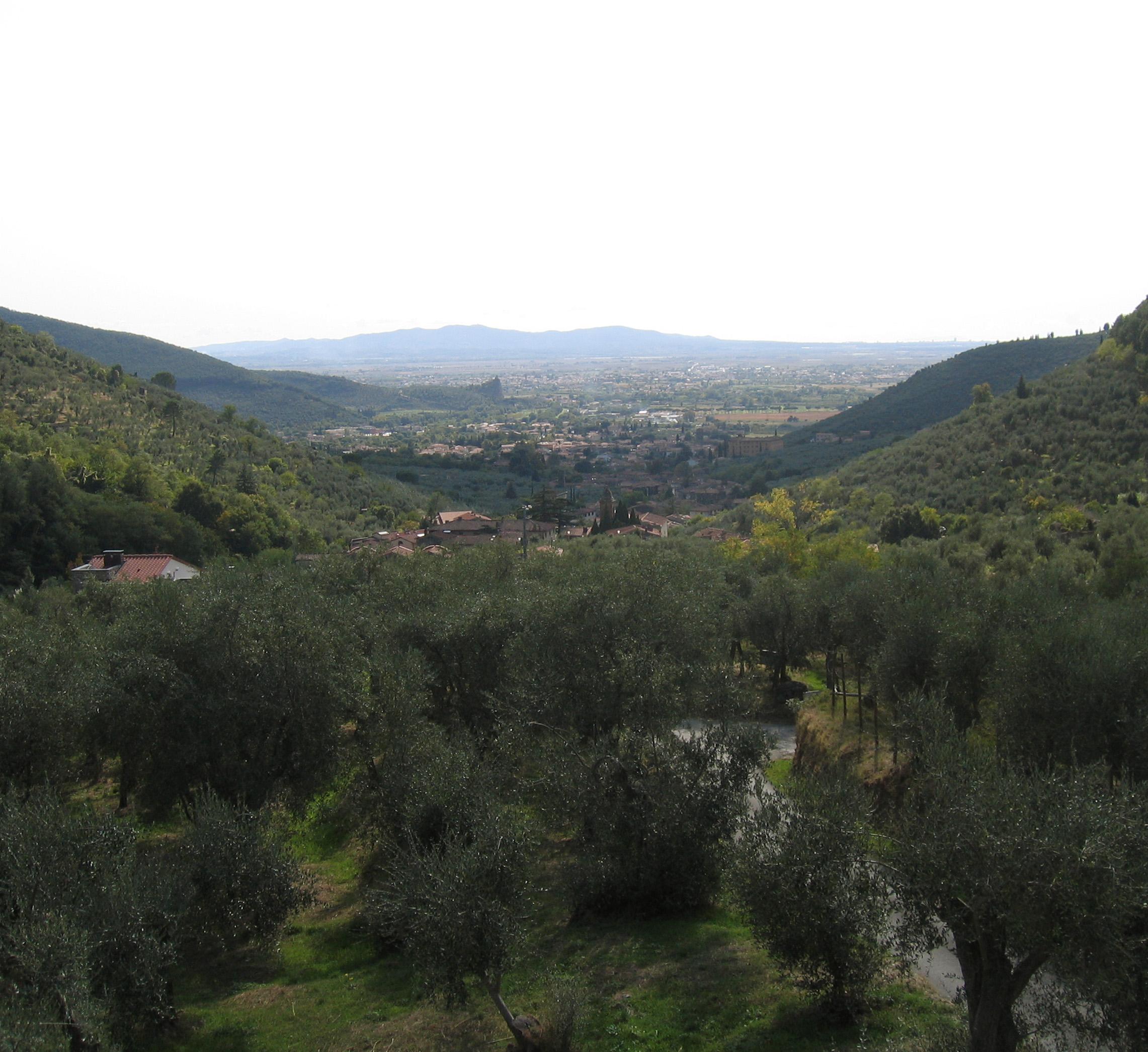 Vista panoramica dall'edificio